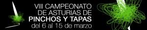 banner-camp-asturias-pyt15.jpg